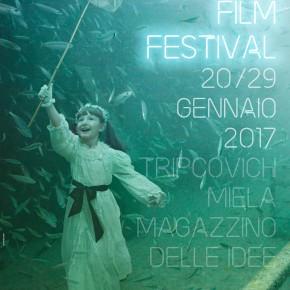IL MONDO SOMMERSO DI ANDREAS FRANKE È L'IMMAGINE DELTRIESTE FILM FESTIVAL 2017
